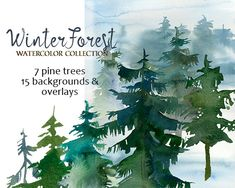 Pine Trees Watercolor Clipart Fir Trees PNG Christmas Winter Forest Landscape Clip Art  Free Commercial Use DIY Forest Wedding Invitation