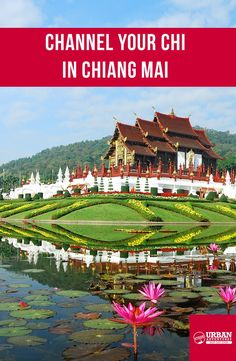 Experience the sites, sounds and flavours of Chiang Mai with a local guide by your side. Book your tour with Urban Adventures today Chiang Mai Tours, Urban, Adventure, Book, Outdoor, Outdoors, Livres, Fairytail, Outdoor Games