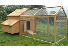 Duck coop. Perfect for night time
