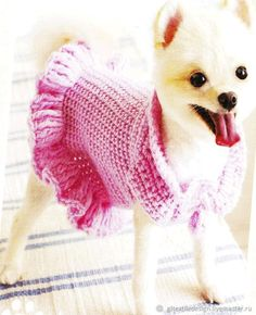 Free Ruffled Small Dog Crochet Sweater Pattern - This small dog sweater with ruffles is perfect for your little girl fur babies who are about It's so cute and stylish she'll be prancing ar. - Crochet and Knit Crochet Dog Sweater Free Pattern, Knit Dog Sweater, Dog Pattern, Crochet Patterns, Small Dog Sweaters, Cat Sweaters, Chat Crochet, Dog Crochet, Free Crochet