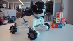 CHiP is the latest robot dog looking to leash your heart