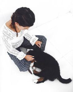braid,hairstyle, tranças, dog, bernesse, berne mountain dog, carinho, fofo, cute, crochet , t-shirt, sweater, stripes pants, blue and white, calça listrada, azul e branco