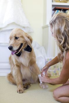 Adorable handsome wedding dog! | http://www.weddingpartyapp.com/blog/2014/08/29/dogs-at-weddings-35-furry-friends/