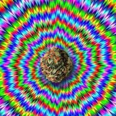 Stare into this picture for 1 hour and you'll see your past, present, and future self pass right before your eyes. #trippy #weed #cannabis
