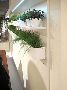 Indoor herb garden ideas for decoration - small garden ideas Herb Garden In Kitchen, Kitchen Herbs, Herbs Garden, Garden Bar, Design Home Plans, Design Tropical, Herb Planters, Herb Pots, Planter Ideas