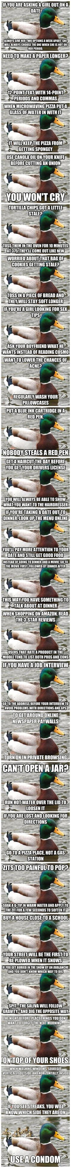 Great advice duck, the last one killed me