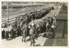 Newly arrived Jews undergoing selection on the ramp at Birkenau, the selection station and extermination subcamp of Auschwitz.  The people in the background are on their way to be gassed. The building of Crematorium II is just visible at the top of the picture.