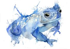 Big Blue Toad Art Print by Meg Ashford Watercolor Projects, Watercolor Sketch, Watercolor Ideas, Bow Tattoo Designs, Watercolor Paintings Of Animals, Frog Tattoos, Frog Pictures, Frog Art, Art For Art Sake