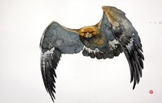 Karl Martens Golden Eagle Flying II (Unframed) (London Gallery) Signed Watercolour on Arches watercolour paper 40 x 60 in 102 x cms Arches Watercolor Paper, Watercolor Bird, Watercolor Paintings, Watercolors, Karl Martens, Eagle Artwork, Eagle Drawing, Bird Artists, Organic Art