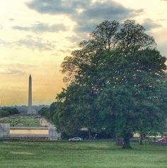 Notes in the Key of Life: 5 Reasons You Should Go to Washington, DC