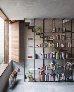 Completed in 2015 in Mexico City, Mexico. Images by Rafael Gamo , Rory Gardiner . The buildings in Condesa, Mexico City, have special regulations surrounding the preservation of architectural heritage because of the history of the. Contemporary Architecture, Interior Architecture, Interior Design, Cool Bookshelves, Bookcases, Bookshelf Wall, Book Shelves, Cafe House, Mexico City
