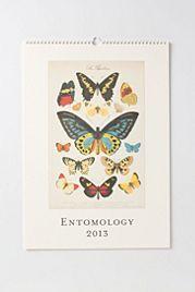 Entomology Wall Calendar
