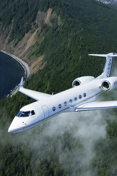 Ryccian Royal Airlines provide private jets for world leaders and billionaires.