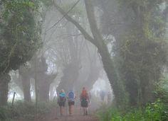 """""""Los últimos del Camino"""" - El Camino de Santiago desde Asturias"""