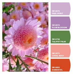Paint colors from Chip It! by Sherwin-Williamsj