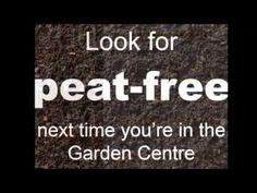 why peat matters — Project Maya