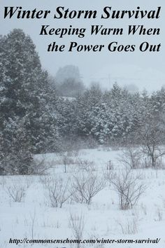 Winter Storm Survival - Keeping You and Your Home Warm When the Power Goes Out - Conserving heat, dressing for warmth, food and water needs, hygiene issues. Survival Quotes, Survival Food, Homestead Survival, Wilderness Survival, Outdoor Survival, Survival Prepping, Emergency Preparedness, Survival Skills, Survival Videos