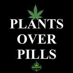 """Plants over pills. Pills, Hemp, King, Plants, Flora, Plant, Planting"