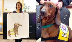 This Baldwinsville Middle School student drew this beautiful drawing of our volunteer Lumpi the dachshund