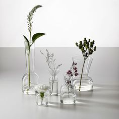 Shop vase from west elm. Find a wide selection of furniture and decor options that will suit your tastes, including a variety of vase. Colored Glass Vases, Clear Vases, Bud Vases, Ikebana, Metal Vase, Vase Fillers, Vase Centerpieces, Eucalyptus Centerpiece, Ceramic Vase
