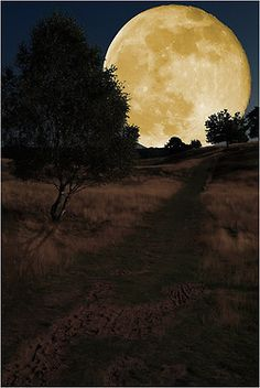 Weg zum Mond  by Helmut Adler [the moon isn't that big or close to earth... though it would be pretty if it was]