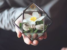 NEW Mini Geometric Terrarium / Cuboctahedron / Ring Pillow by Waen