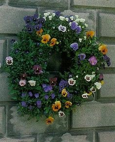 How To : Plant A Pansy Living Wreath... I would actually do this.