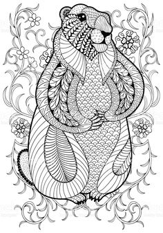 hand drawn artistic marmot groundhog in flowers for adult coloring