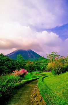 Volcan Arenal, Costa Rica -=- The Road Leading up to the Quaint Village of La Fortuna at the Base of the Arenal Volcano ♥༻