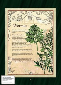 Wermut - Wermuttee Mehr
