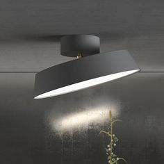 Plafonnier Alba - 1 ampoule