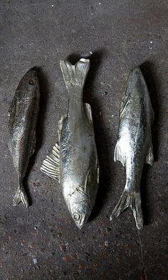 Silver fish - Plümo Ltd