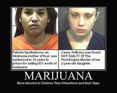 Marijuana - More Harmful to Children Than Chloroform and Duct Tape Cannabis, C C Music Factory, Casey Anthony, One Degree, Crazy Stupid, Whats Wrong, Duct Tape, True Crime, Ganja