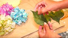 I Was Blown Away When I Discovered These Hydrangeas Were Made Out Of Coffee Filters!   DIY Joy Projects and Crafts Ideas