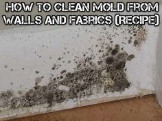 How To Clean Mold from Walls and Fabrics (Recipe) - All Natural & Good