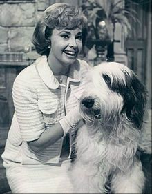 """Audrey Meadows guest stars on """"Please Don't Eat the Daisies"""" (1965)"""