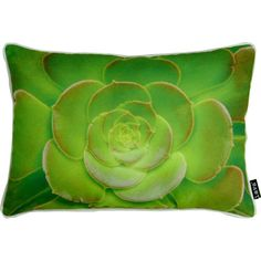 "Cactus Flower Indoor/Outdoor Pillow, 20"" x 14"""