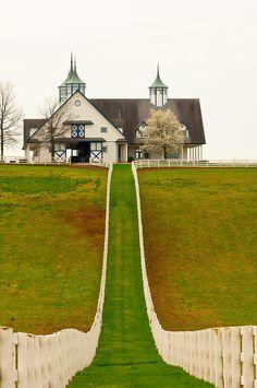 Kentucky Farms   Manchester horse farm, Lexington, Kentucky USA