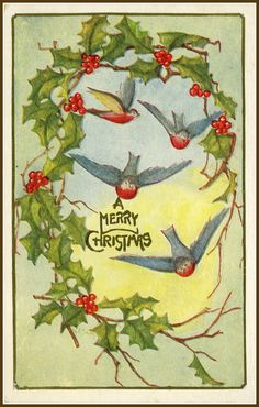 Vintage Christmas card with bluebirds!