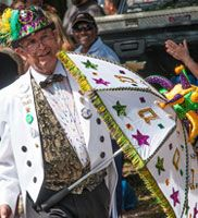 Its Mardi Gras 2015!!! Get mardi gras info and celebrate like a local! #mardigras #beads