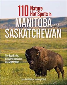 110 Nature Hot Spots in Manitoba and Saskatchewan: The Best Parks, Conservation Areas and Wild Places: Jenn Smith Nelson, Doug O'Neill: AD- This is going to be a great Christmas gift! Hot Spots, Great Christmas Gifts, Great Books, Conservation, Parks, Tourism, Good Things, Nature, Products