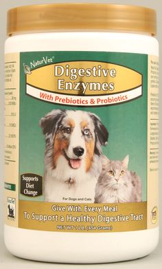 A source of: alpha-Amylase which can hydrolyze starch Protease which can hydrolyze proteins Cellulase which can break down cellulase Lipase which can hydrolyze triglycerides. Prebiotics And Probiotics, Pet Health, Dog Cat, Diet, Animal, Cats, Healthy, Per Diem, Gatos