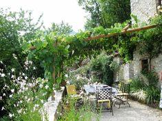 mediterranean-patio-landscaping-wooden-pergola-grapevines