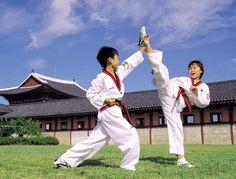 Tae Geon Do : Korean martial art