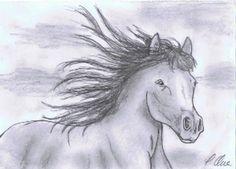 Zeichnung (Bleistift) Pferd by pilli, Hallo,  diesmal habe ich ein rennendes Pferd gezeichnet und möchte es euch gerne vorstellen. Es wurde ...