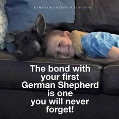 GSD Angel and Jake loved by Sara Newman D'Elia