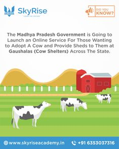 The Madhya Pradesh Government is Going to Launch an Online Service For Those Wanting to Adopt A Cow and Provide Sheds to Them at Gaushalas (Cow Shelters) Across The State. Madhya Pradesh, Online Coaching, Shelters, Sheds, Did You Know, Affair, Cow, Adoption, Product Launch