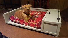 Items similar to Large Dog Bed // Wooden Dog Bed // Dog Bed with Storage // Wood Pet Bed // Farmhouse Dog Bed // FREE Local Delivery or Pick Up Available on Etsy - Dog Kennel Dog Toy Storage, Bed Storage, Storage Baskets, Farmhouse Dog Toys, Wooden Valance, Dog Toy Basket, Fancy Dog Collars, Wooden Dog Kennels, Diy Dog Bed