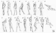 Female_poses_chart_by_Aomori