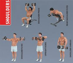 dumbbell-shoulders-exercises Shoulder Training, Shoulder Workout, Shoulder Exercises, Dumbbell Shoulder, Once In A Lifetime, Best Diets, Strength Training, Excercise, Personal Trainer